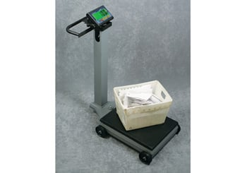 1100 Series Portable Floor Scales