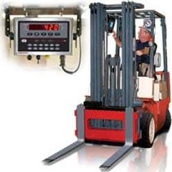 Rice Lake CLS-420 Cargo Lift Scale