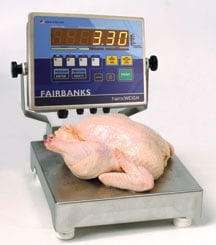 Food Scale Food Service Scales