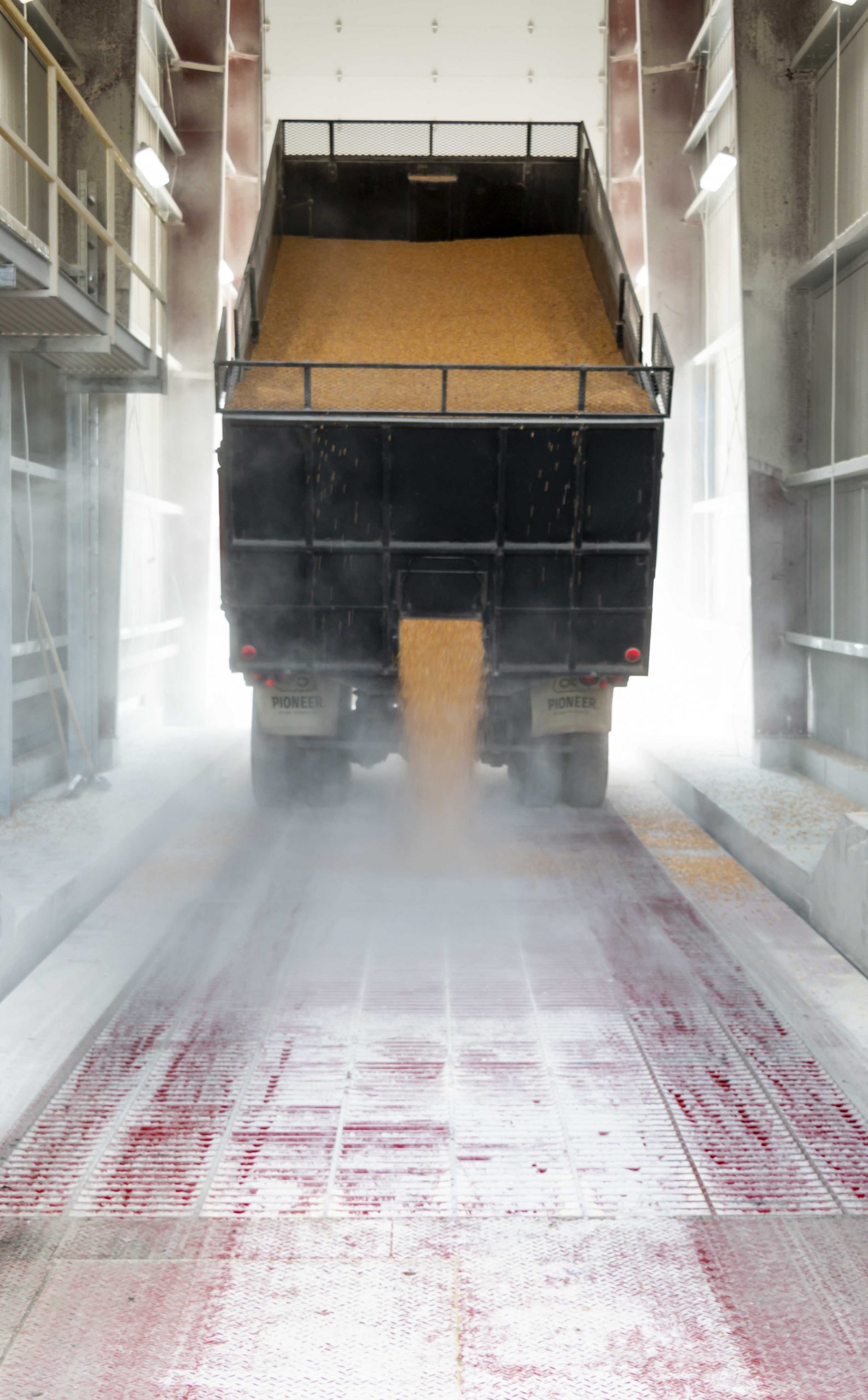 grain processors